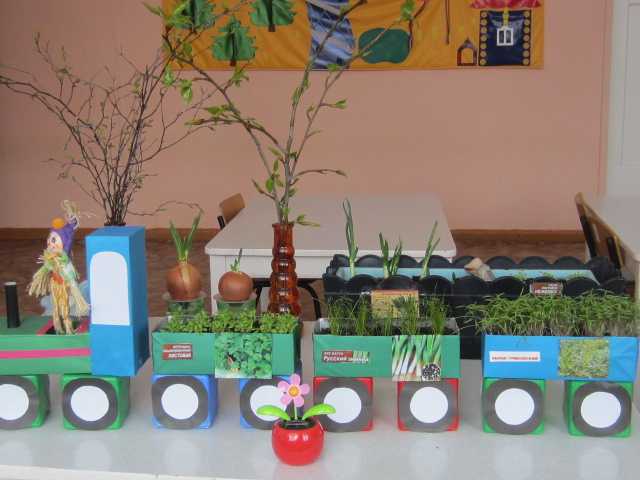 Оформление уголка экологии в детском саду
